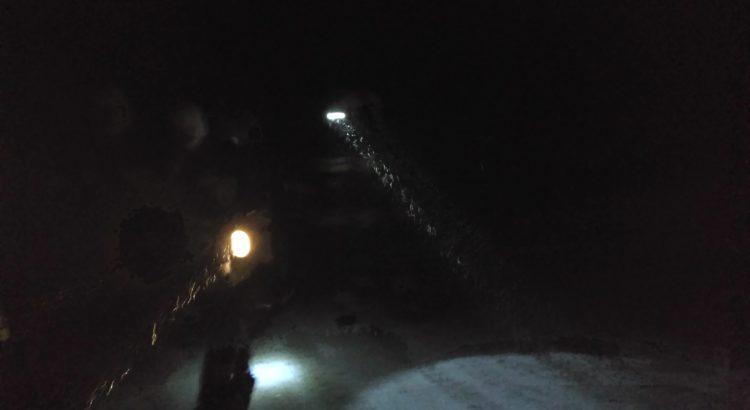 Dwa strażaków przeszukuje las w nocy.