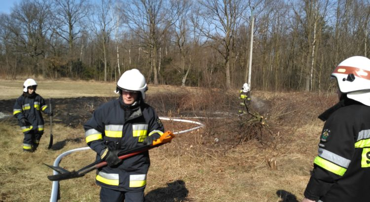Działania strażaków z OSP Gostyń na pogorzelisku.